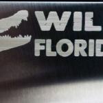 wild_florida